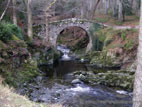 Foley's Bridge in Tollymore Forest Park