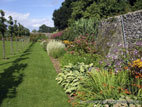 Glenarm walled garden border