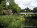 Hillsborough Castle lake on a sunny day