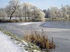 Hillsborough Lake, County Down, frozen with sunshine and frost on trees