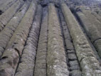Giant's Organ basalt columns at the Giant's Causeway, Northern Ireland