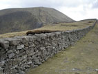 Mourne Wall high in the Mourne Mountains